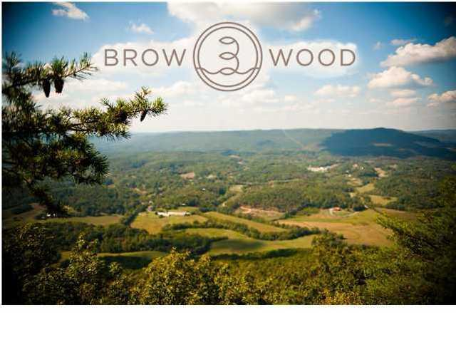 22 Brow Wood Ln #BV22, Lookout Mountain, GA 30750