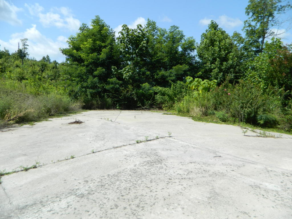 54 Whispering Pines Drive, Trenton, GA 30752