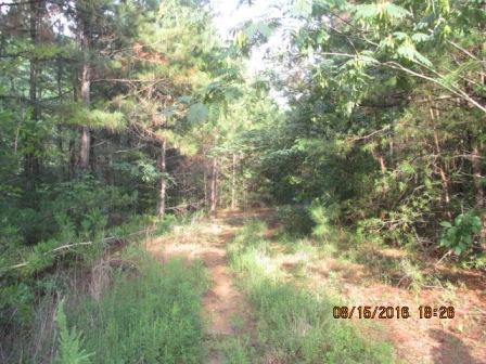0 Scenic Drive, Rossville, GA 30741