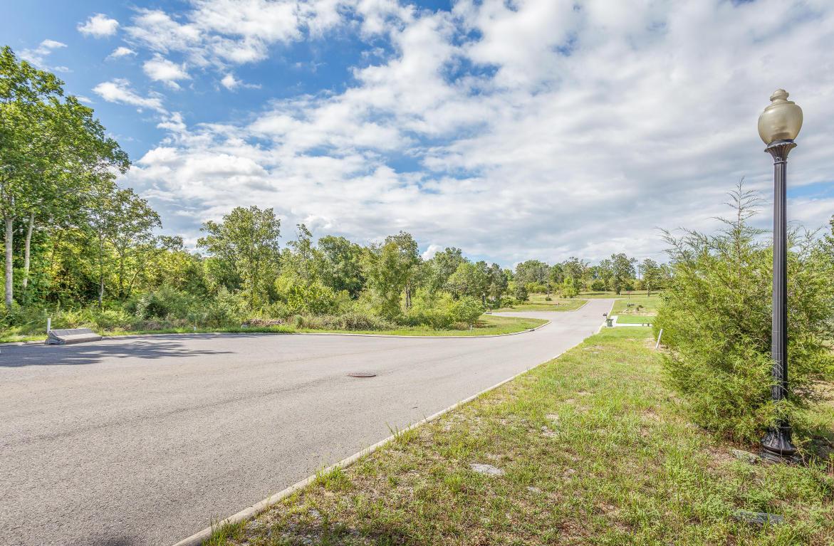0 Inlet Aisle Drive #LOT 110, Fort Oglethorpe, GA 30742