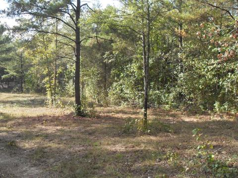950 E Teems Rd #LOT 1, Ringgold, GA 30736