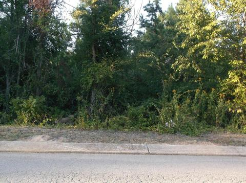 0 Magnolia Place0008, Ringgold, GA 30736