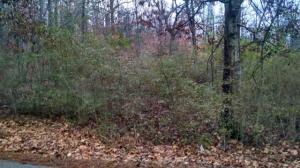 1 New Summit Hill Road, Ringgold, GA 30736