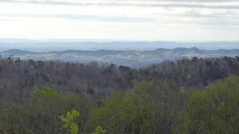 0 Lookout Crest Ln #12, Lookout Mountain, GA 30750