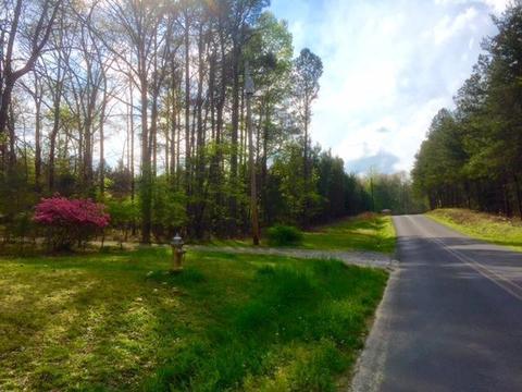 0 Beavers Rd, Summerville, GA 30747