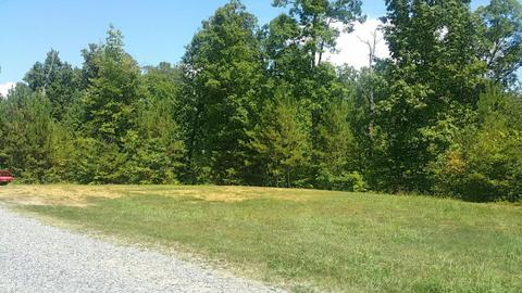 55 Homes For Sale In Chatsworth GA