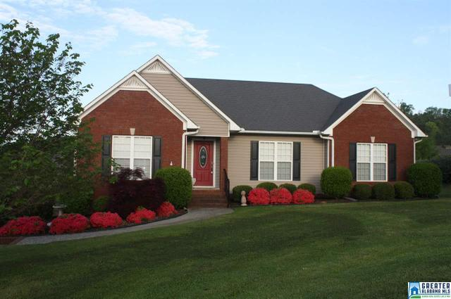 907 Ransome Dr, Oneonta AL 35121