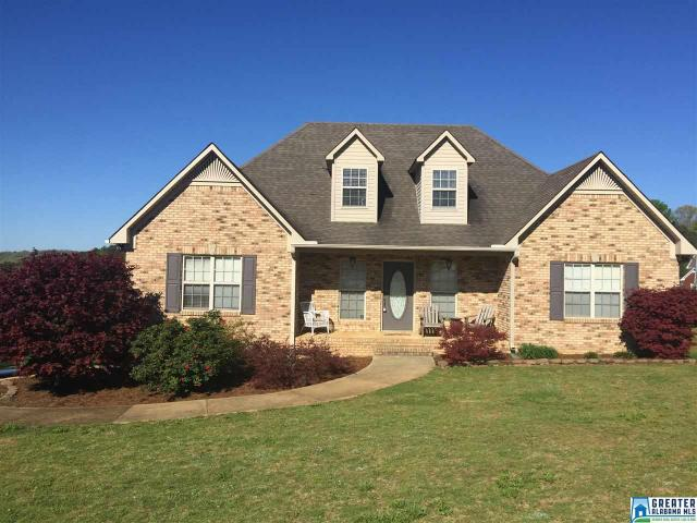 903 Ransome Dr Oneonta, AL 35121