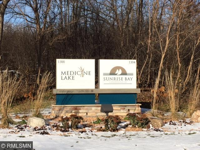 1304 W Medicine Lake Dr #APT 206, Minneapolis MN 55441