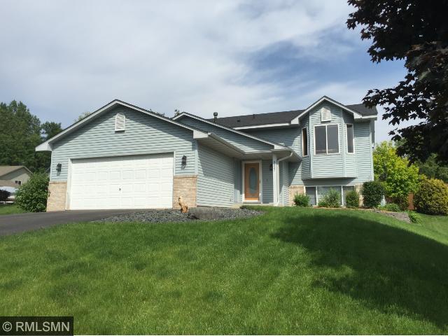 9337 Jeffery Ct, Cottage Grove MN 55016