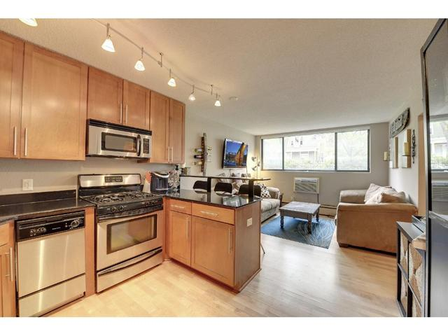 2530 1st Ave #APT 101, Minneapolis MN 55404