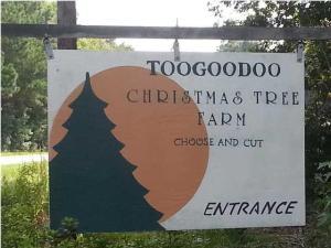 7181 Toogoodoo Rd, Hollywood, SC