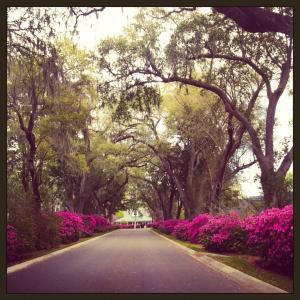642 Fair Spring Dr, Charleston SC 29414