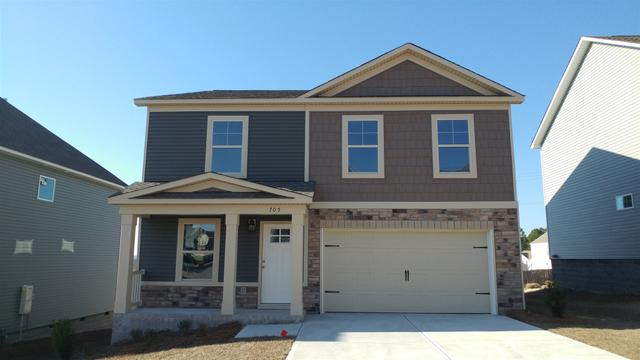 705 Colina Ct #455, Lexington, SC 29073