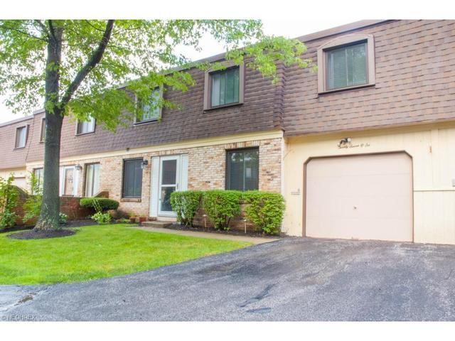 1651 Mentor Ave #APT 2706, Painesville, OH