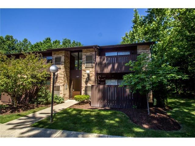 3265 Mayfield Rd #32 Cleveland Heights, OH 44118