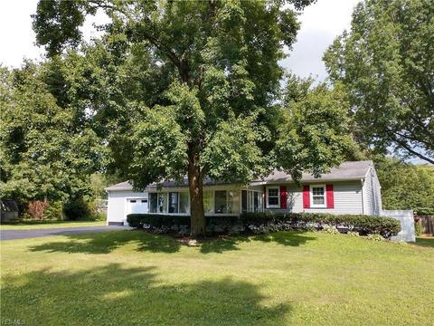 Admirable 24 Lake Milton Homes For Sale Lake Milton Oh Real Estate Interior Design Ideas Clesiryabchikinfo
