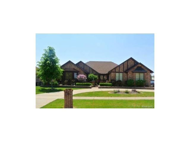16054 Andrea Clinton Township, MI 48038