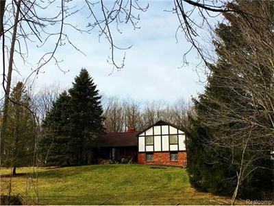 3300 Lake George, Dryden MI 48428