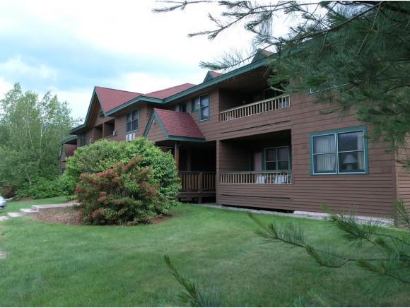 164 Deer Park #173D, Woodstock, NH 03262