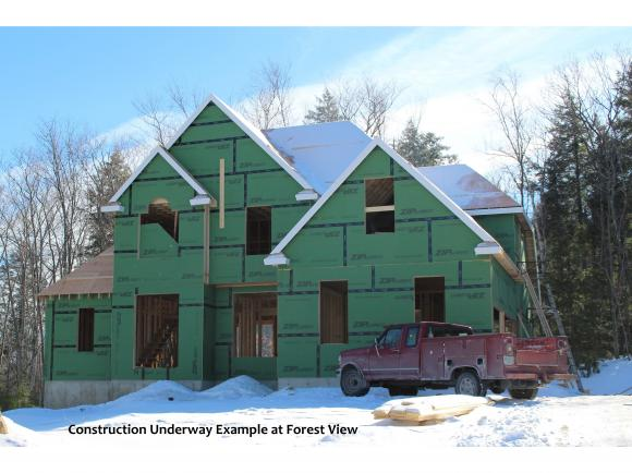 3-21 Lorden Road Forest View, New Boston, NH 03070