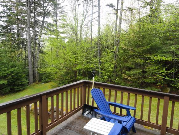 5 Forest Ln #48, Carroll, NH 03575