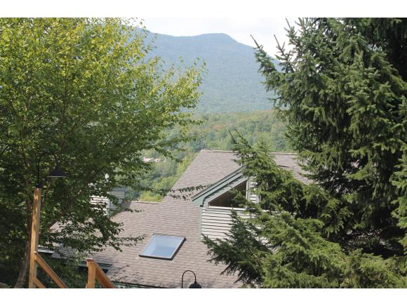 107 Black Mountain Road #107-1, Lincoln, NH 03251