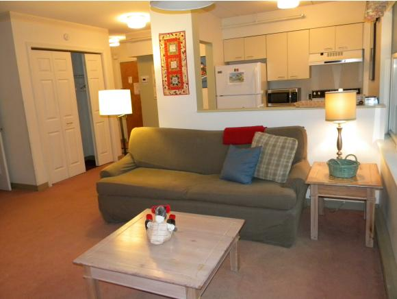 28-201 Packards Rd #201, Waterville Valley, NH 03215