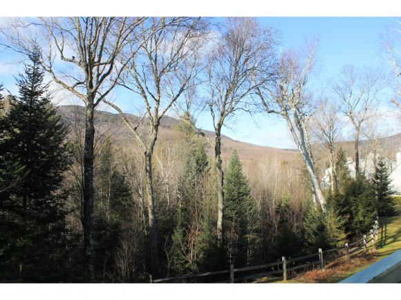 22 Emerson Way, Waterville Valley, NH 03215