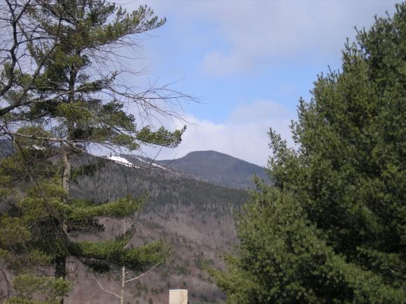 6 Windsor Hill Way - E47 #E-47, Waterville Valley, NH 03215