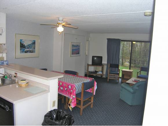 103 Black Bear Road #103, Waterville Valley, NH 03215