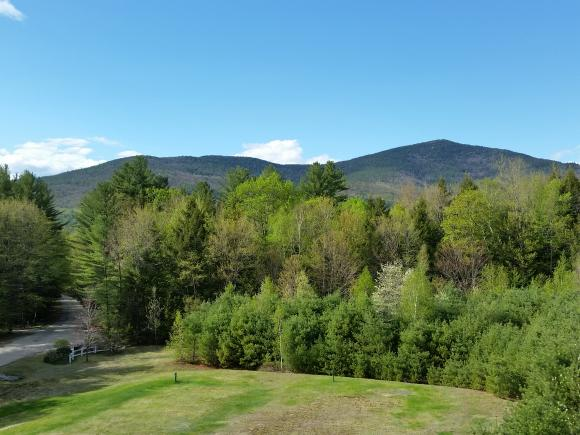 115 Jessicas Way #10, Conway, NH 03860