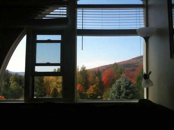 28 Packards Rd #509, Waterville Valley, NH 03215