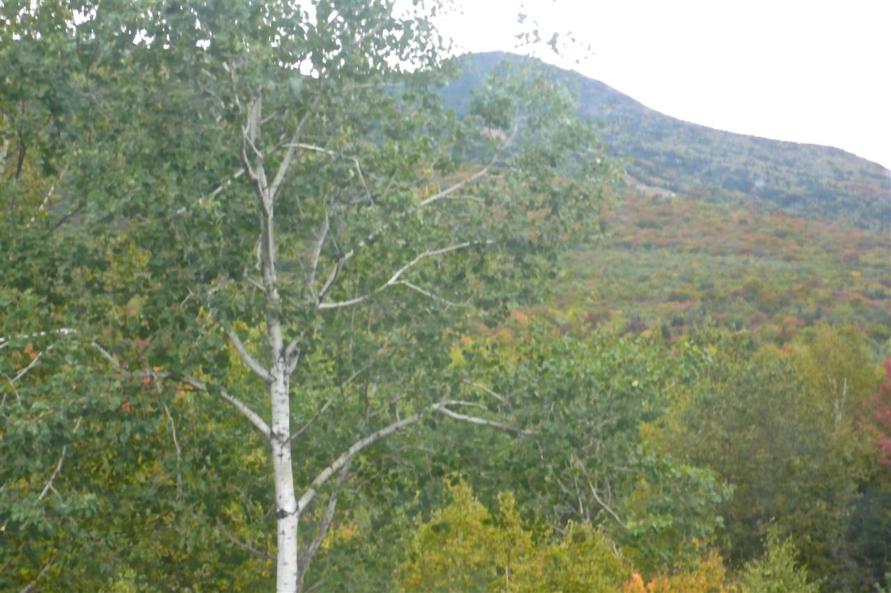 15 Moose Way #32, Waterville Valley, NH 03215