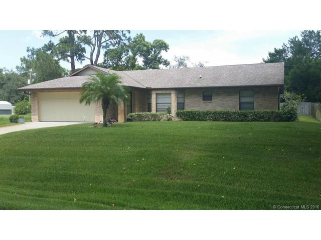 2941 Travelers Palm Dr, Out Of Area, FL 32141