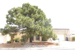 4528 Durango Ct, Albuquerque NM 87109